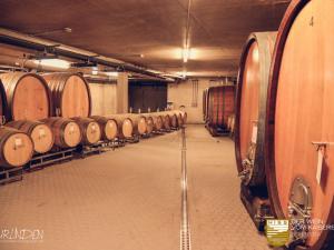 ELIN Referenz Bild: Weingut HISS - Neubau Weinverkauf